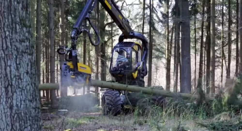 cutting tree machine