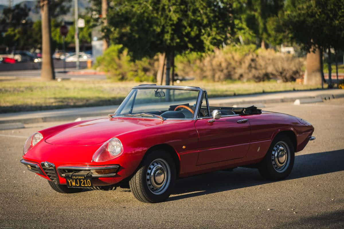 iconic cars of the 60's - 1966 Alfa Romeo Spider