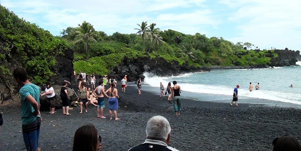 Honokalani Beach(Andy's Awesome Adventures)