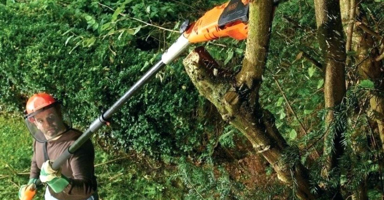 Silky Telescopic Manual Pole Saw